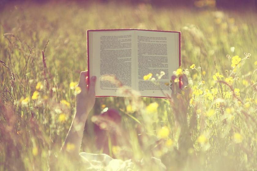 reading, books